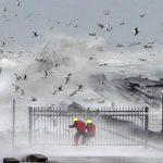 Meteo voor zeezeilers